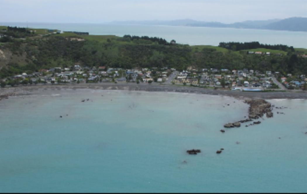 UC experts' uplifting news for Kaikōura reefs