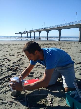 High levels of microplastics found on NZ coast