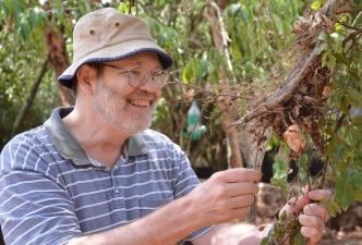 UC academic honoured for arachnology career