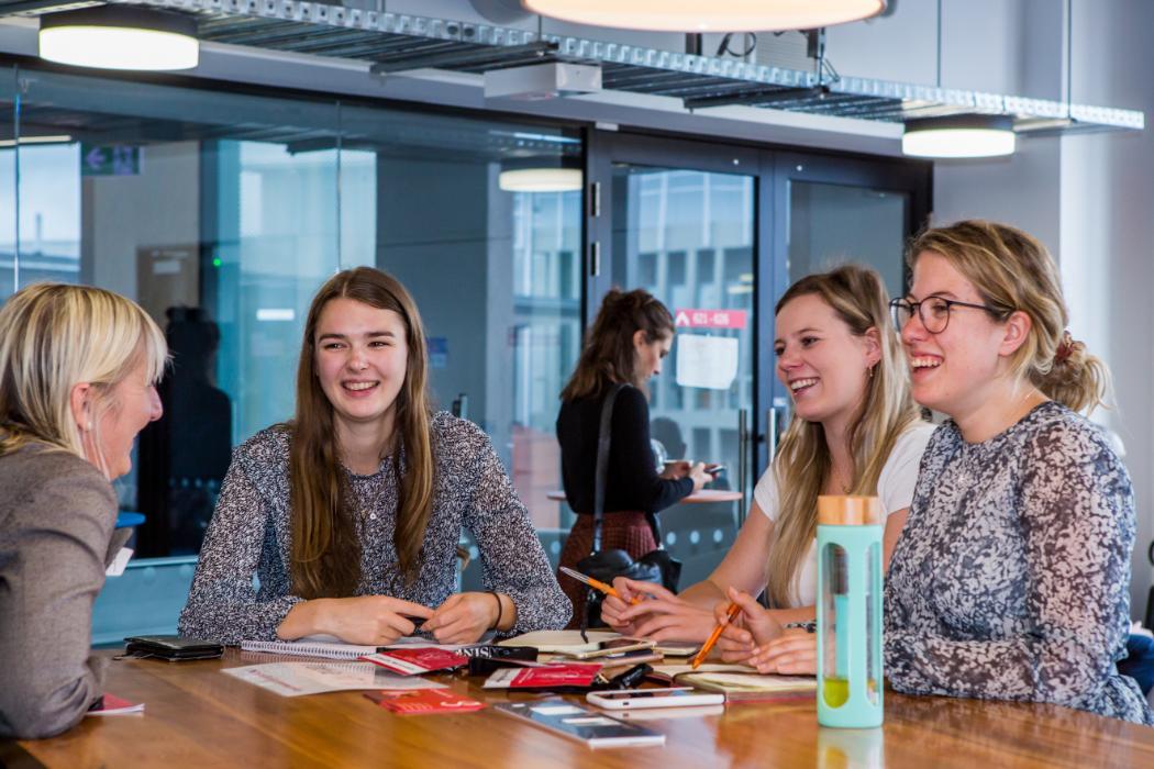Summer Startup mentoring