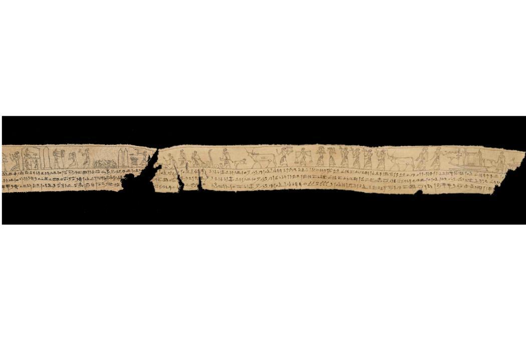 Mummy shroud wrap fragment