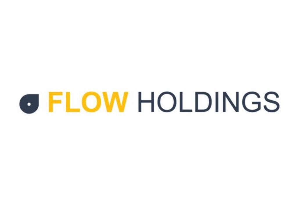 Flow Holdings logo new