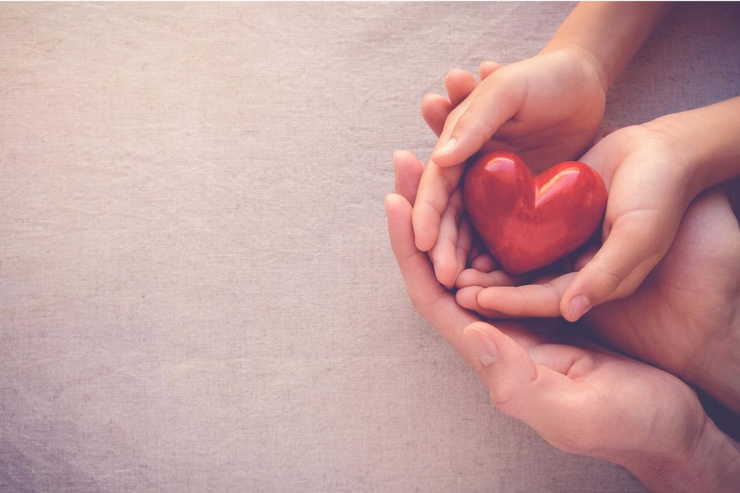 Adult and child's hands holding a heart together