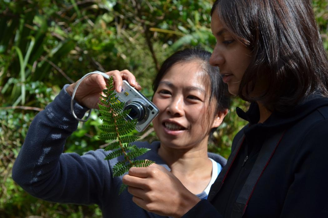 Students photographing native flora, Biology