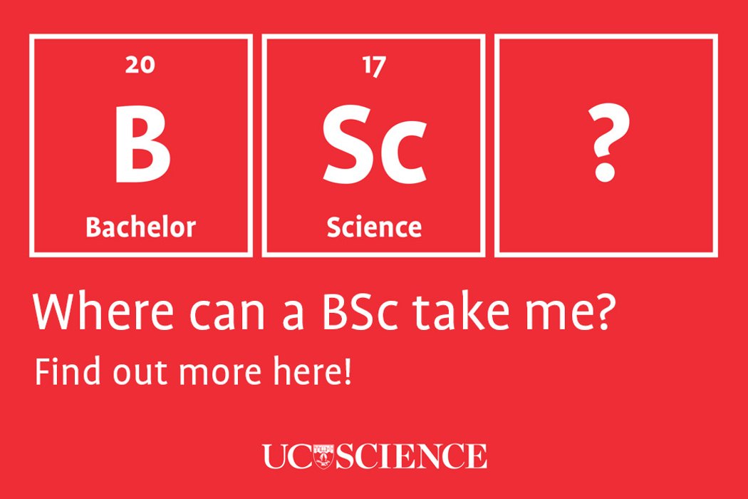 Where can a BSc take me?