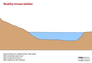 Healthy stream habitat activity in the freshwater biodiversity box outreach module