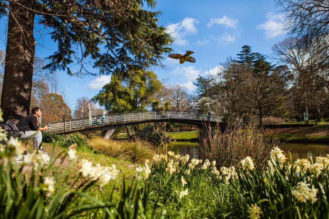 Christchurch City, Botanical Garden