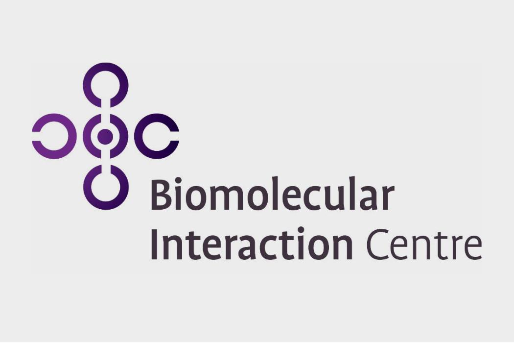 BIC logo on grey