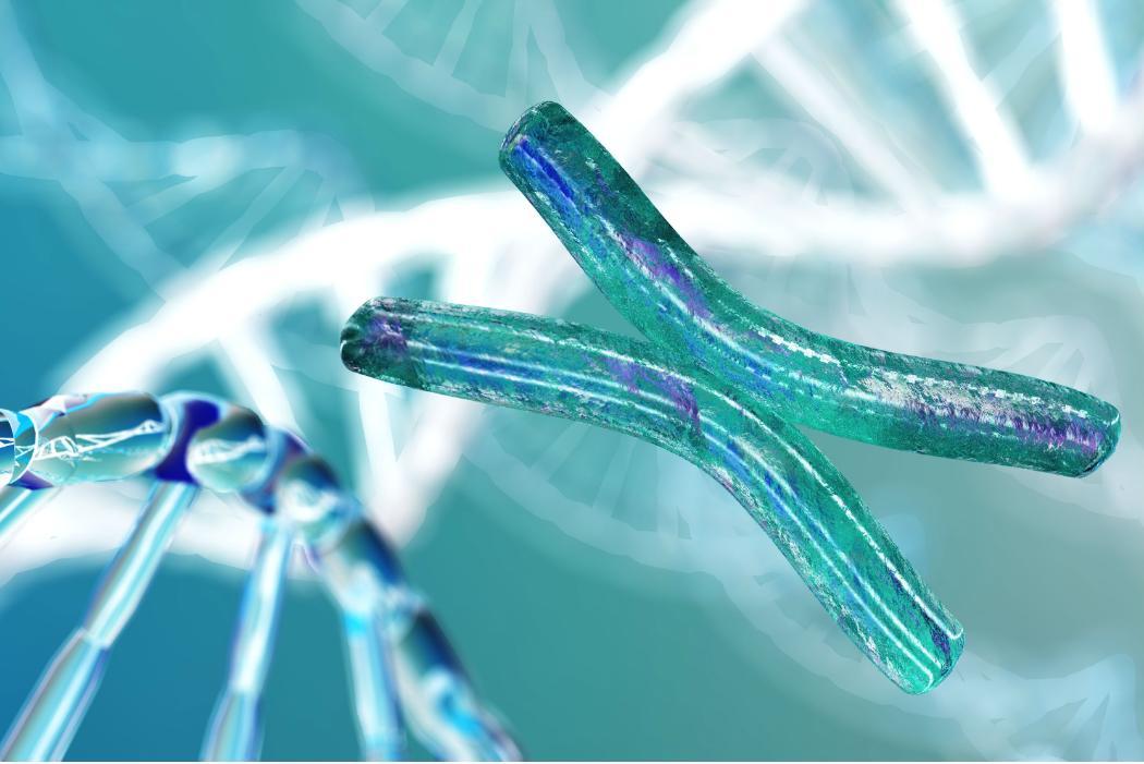 Chromosome on DNA background