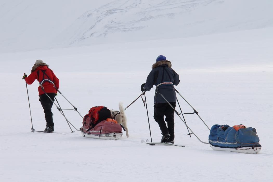 researchers in antarctica with dog