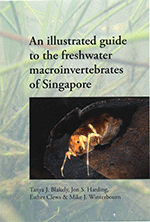 An illustrated guide to the freshwater macroinvertebrates of Singapore