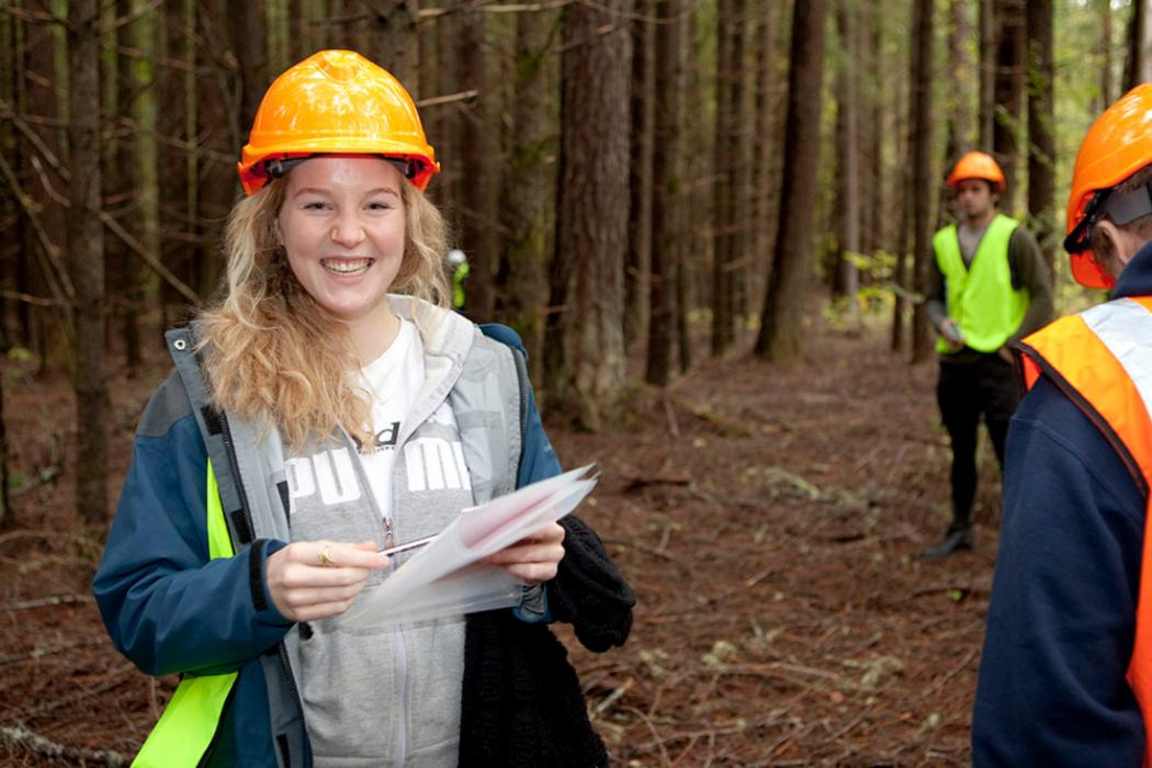 Forestry pic
