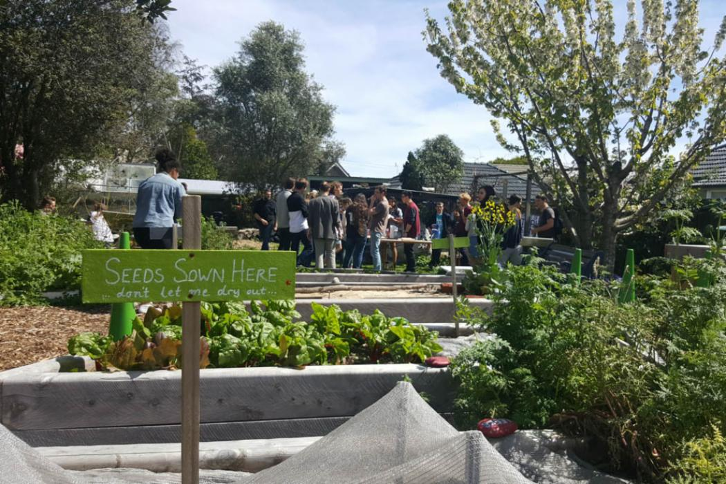 Mental health community garden