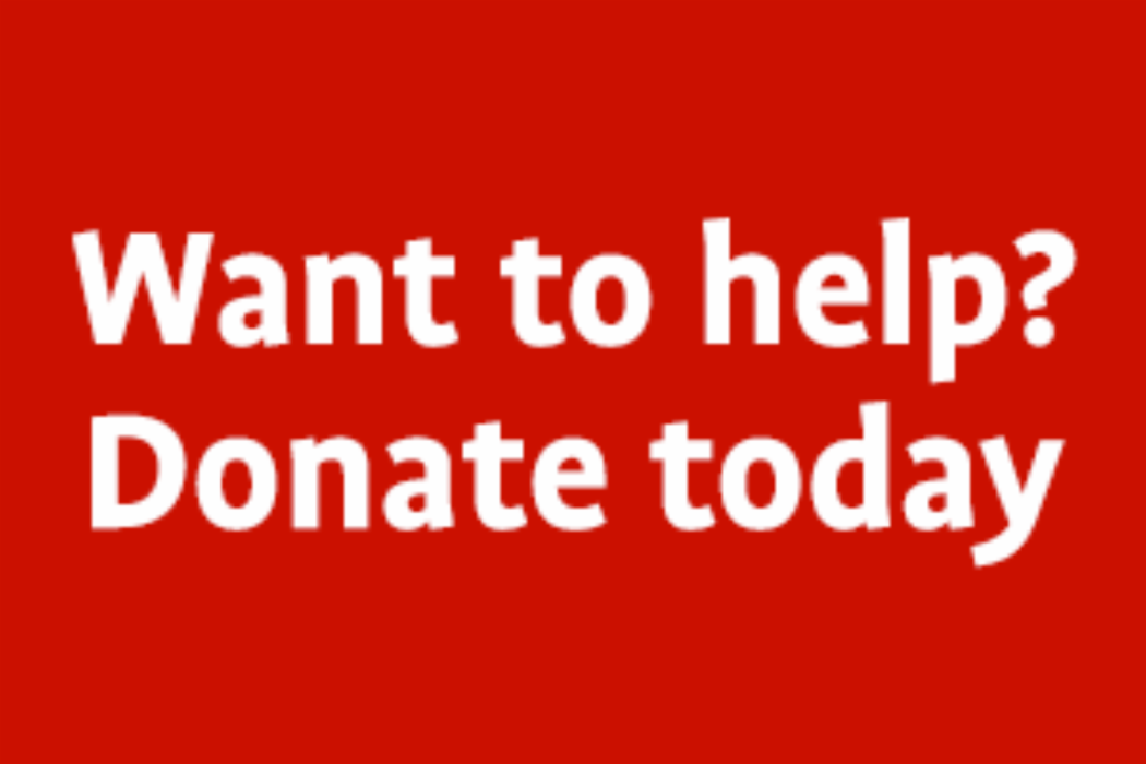 Want to help? Donate now